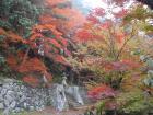 飛騨高山、飛騨古川、郡上八幡めぐりサイクリング(2010.11.6〜7) - 12