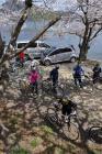 奥琵琶湖 海津大崎の桜 日帰りお花見サイクリング(2010.4.10) - 15