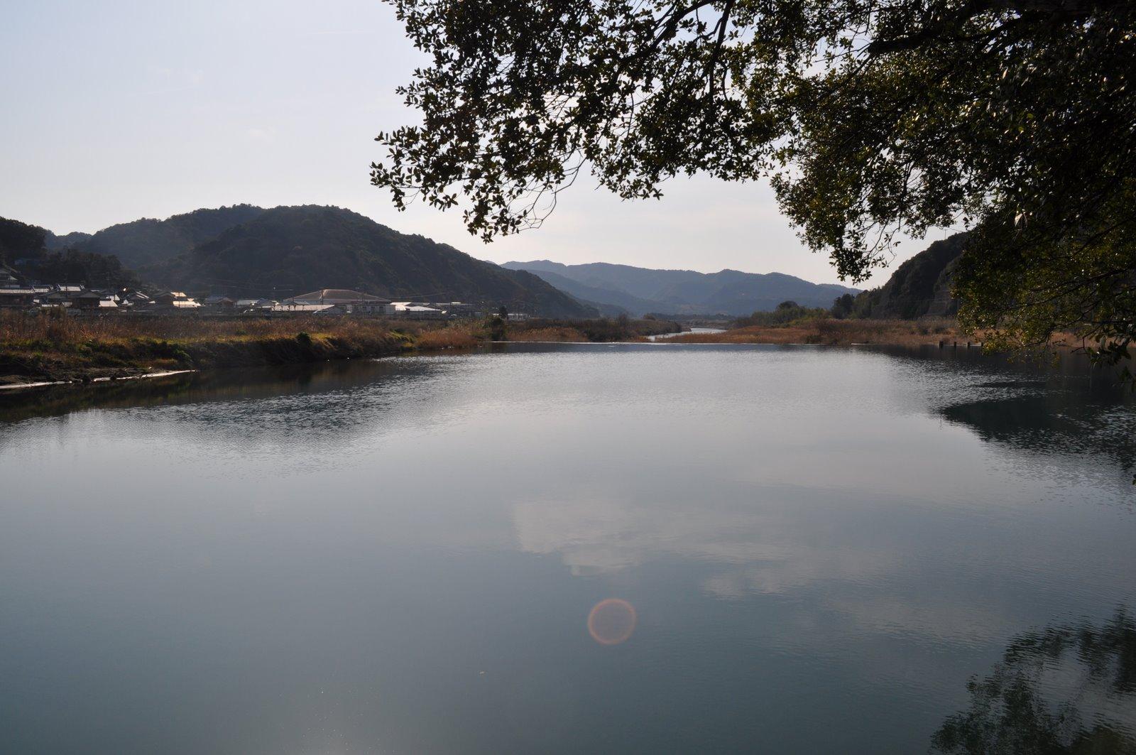 天然記念物大うなぎ生息池