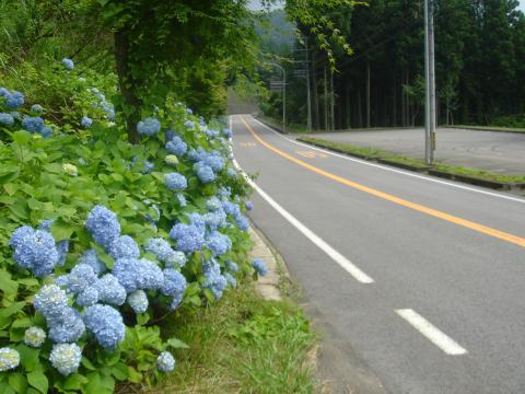 飛騨高山・古川、郡上八幡サイクリング下見 - 40