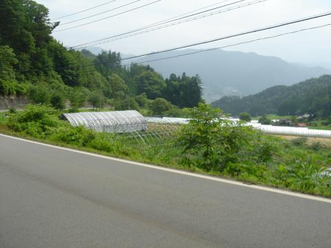 飛騨高山・古川、郡上八幡サイクリング下見 - 6
