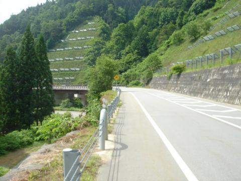 飛騨高山・古川、郡上八幡サイクリング下見 - 8