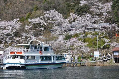 奥琵琶湖 海津大崎の桜 日帰りお花見サイクリング(2010.4.10) - 22