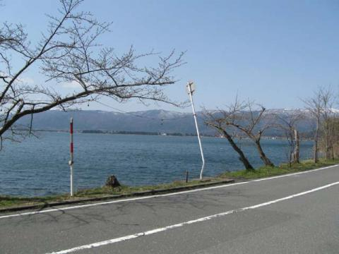 奥琵琶湖 海津大崎の桜 日帰りお花見サイクリング下見(2010.3.22) - 10
